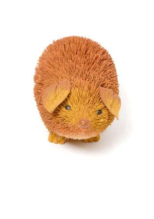 bristle: Bristle Hedgehog