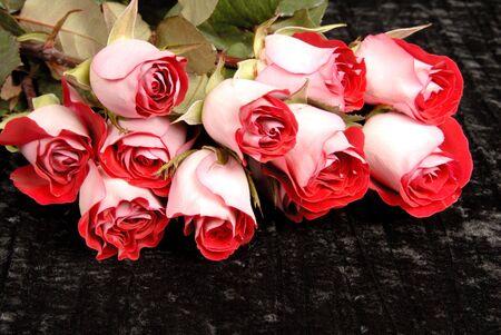 Bouquet of Roses Stok Fotoğraf