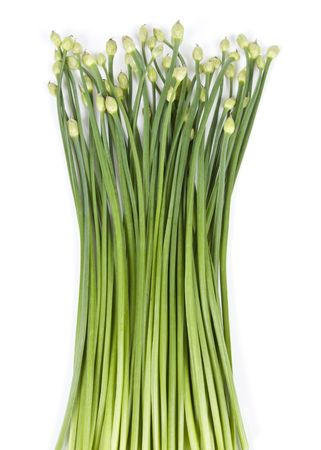 chives: Garlic Chives