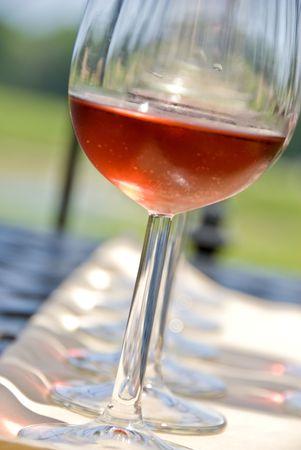 Wijn proeverij door een wijn gaard