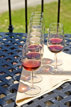 Wine Tasting by a Vineyard Stock Photo - 3341308