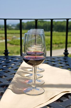 Wine Tasting by a Vineyard photo