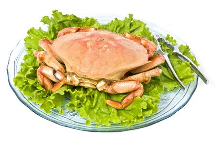 Prepared Dungeness Crab photo