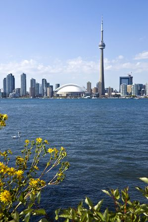 The Toronto Skyline photo
