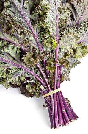 Purple Kale Isolated on White