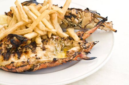 Grilled Caribbean Lobster Stock Photo - 4794309
