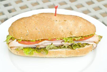 multi grain sandwich: Turkey Sandwich