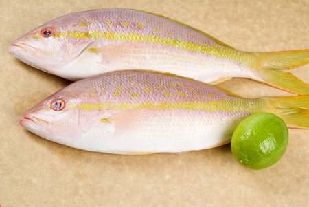 Yellow Tail Snappers and Limes
