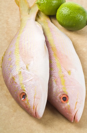 Yellow Tail Snappers and Limes Stock Photo - 9733767
