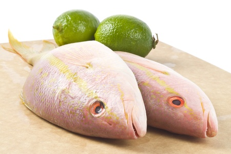 Yellow Tail Snappers and Limes Stock Photo - 9733233