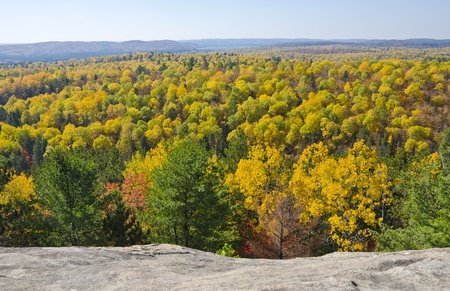 Fall Colors in Algonquin Park Ontario Stock Photo - 10876734