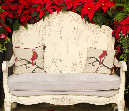 red sofa: Antique White Sofa Chair Surrounded by Red Poinsettia