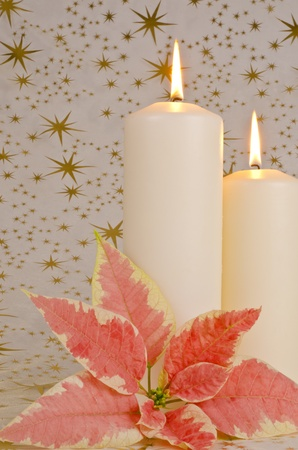 Christmas Candles and Pink Poinsettia photo