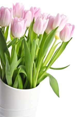 pink tulips: Pretty Pink Tulips in a Vase