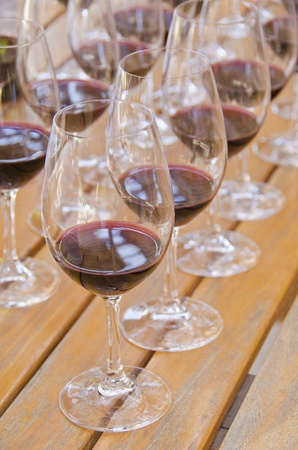 Wine Tasting  Stock Photo - 13328409