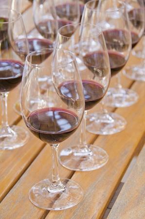 Wine Tasting Stock Photo - 13328409