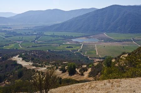 Casabalanca Valley Chile Stockfoto