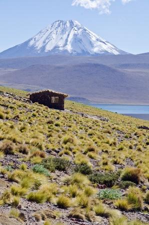 Miscanti Lagoon and Mountain in Atacama Desert Chile  Stock Photo - 13328267