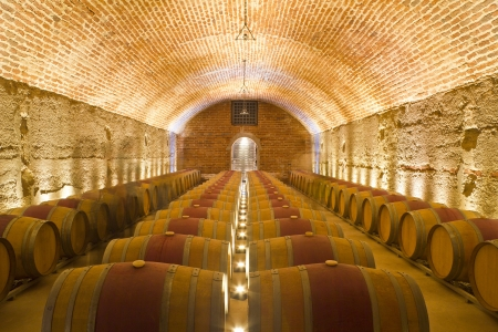 Righe di botti di vino in una cantina Archivio Fotografico - 13316098