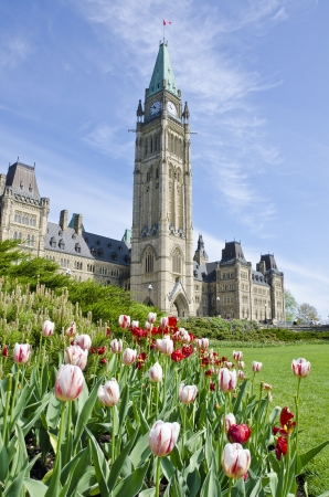 Parliament Hill Ottawa and Tulips photo