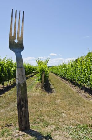 wine road: Giant Fork in a Vineyard Stock Photo