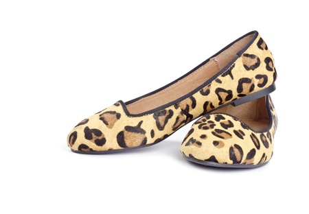 Women s Animal Print Flat Shoes Isolated on White Banco de Imagens