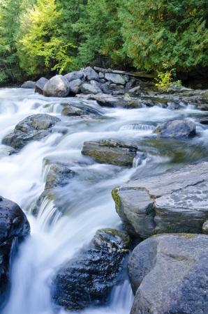 flowing river: R�o que fluye sobre rocas