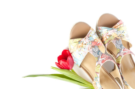 sandals isolated: Floral Design Wedge Sandals Isolated on White Stock Photo
