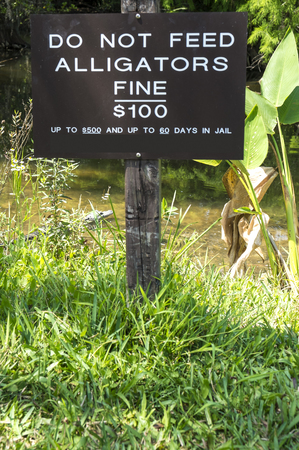 warning signs: Alligator Warning Signs