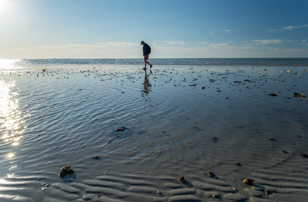 Looking for Seashells at Low Tide Stock Photo