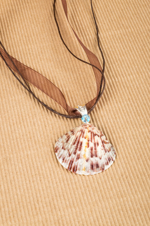 scallop shell: Scallop Shell Necklace on Corrugated Paper