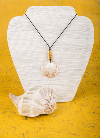 display stand: Seashell Necklace on a Display Stand Stock Photo