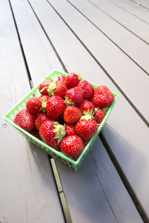 Freshly Picked Strawberries in a Green Plastic Basket Stock Photo