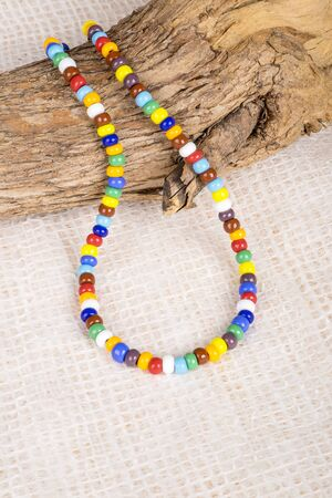 choker: Colorful Bead Necklace Displayed Over Trees Branch
