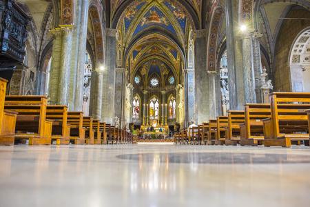 minerva: Interior Shot of Santa Maria sopra Minerva Rome