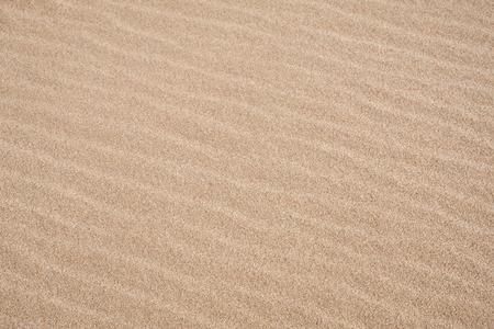 Details of Wave Pattern on a Sandy Beach