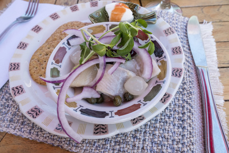 Pickled Herrings Served with Red Onions, Pea Sprouts, Pickled Pearl Onions and Capers in a Colorful Bowl Reklamní fotografie