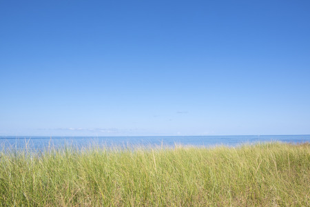 Tranquility on a Beach in Prince Edward Island