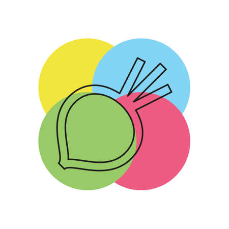 vector sugar Beet illustration isolated - healthy vegetable, nutrition icon - veggie food, vector beetroot. Thin line pictogram - outline stroke