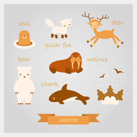 arctic landscape: cartoon illustrations of polar animals