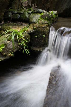smokies: Water flowing over rocks