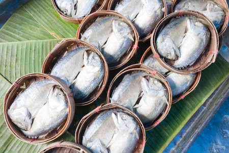 klong: Mae Klong Mackerel fish Stock Photo