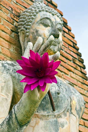 pink lotus in Buddha hand , old city is Sukothai , Thailand ,  ( , molded this figure establishes in gold border tours Thailand , be of nobody public is owner of ) photo