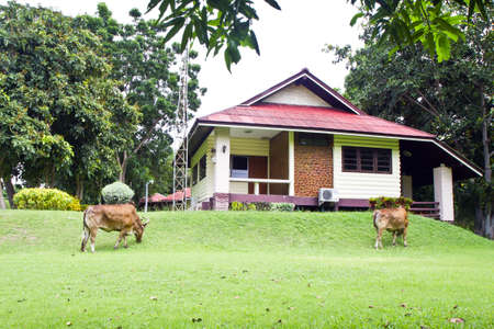 phetchburi: the weekend house where Chaum park , Phetchburi , Thailand ,  Stock Photo