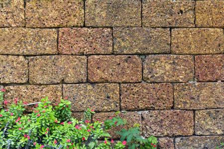 castle conditioning: brick red-brown wall that have the grass and red flower  Stock Photo