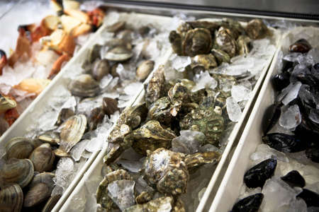 Seafood for sale at shop Stock Photo - 13048827