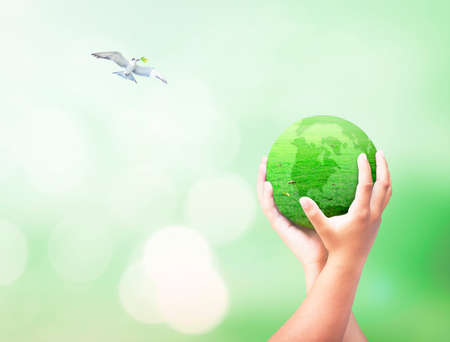 World environment day concept: Two human hand hold globe of grass and bird flying on blurred nature background Standard-Bild