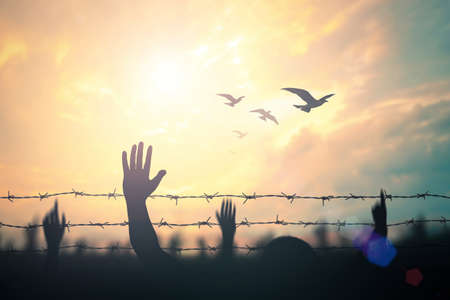 International human right day concept: Silhouette refugee hands raising and barbed wire on sunset background 版權商用圖片