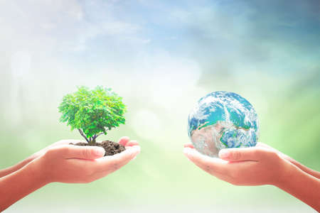 World environment day concept: Two human hands holding earth globe and heart shape of tree over blurred nature background.