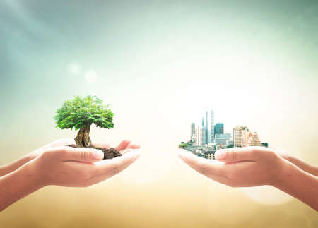 Sustainable development goal (SDGs) concept: Two human hands holding big tree and city over blurred green nature background